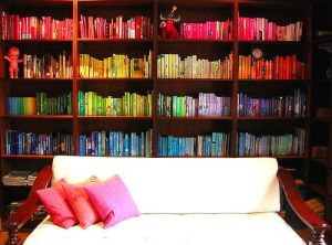 Rainbow bookshelves